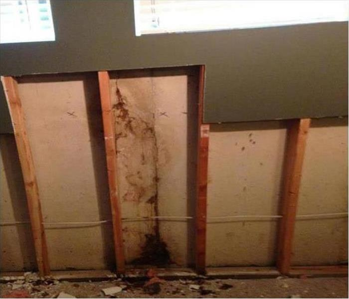 Mold Damage – Tucson Home After