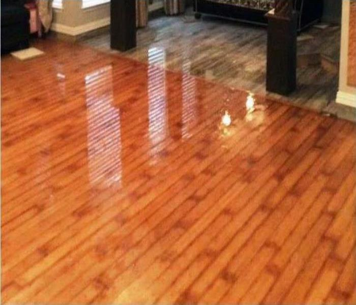 Water Damage Repair In Redington