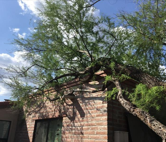 Storm Damage Why Professionals are Needed for Water Damage Restoration in Tucson