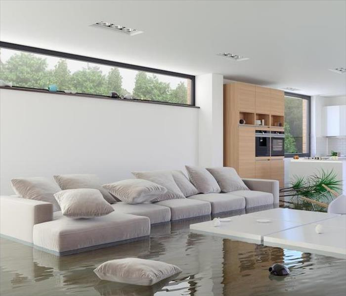 Storm Damage How Professional Restoration Works for Flood Damage in Your Tucson Home