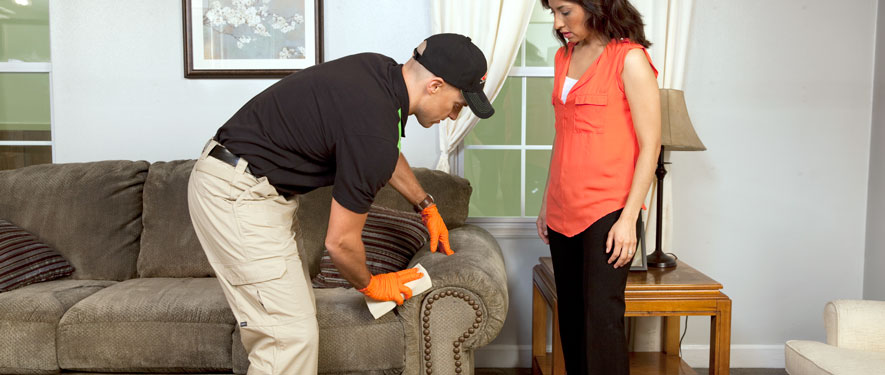Tucson, AZ carpet upholstery cleaning